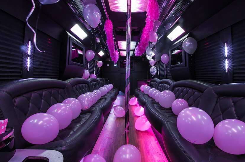Kids Birthday Party Limo Bus